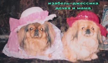 Прикрепленное изображение: иза_и_джесска_в_шляпах.jpg
