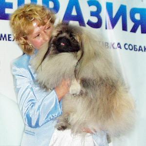 Елена Курбанова