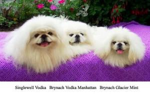 pic-1-vodkas