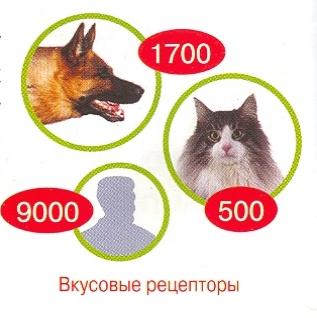 msg-3145-1251357293