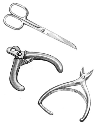 Ножницы и два вида когтерезок для пекинесов
