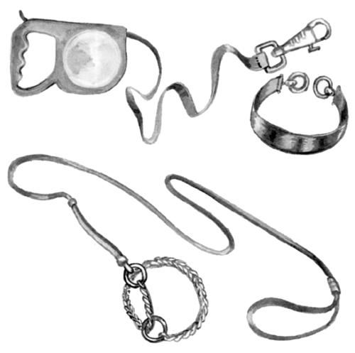 Рулетка для выгула собаки и ошейник типа «удавка» с кольцами-ограничителями, надевающийся через голову